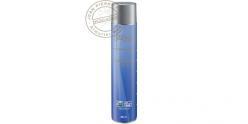 Bonbonne de Gaz pour Soft Air - 600 ml